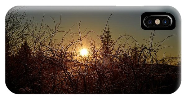 Sunrise Thru The Brush IPhone Case