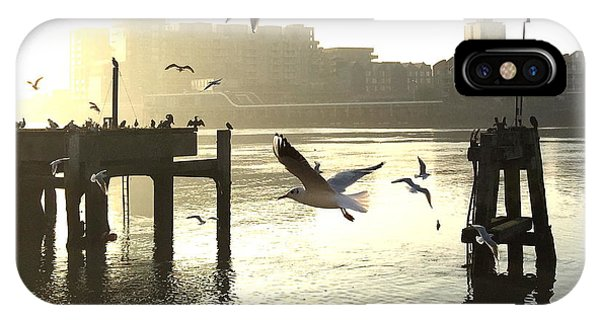 Sunrise With Seagulls IPhone Case