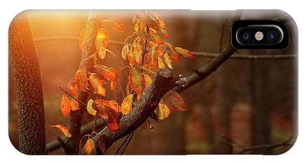 Sunset #8 IPhone Case