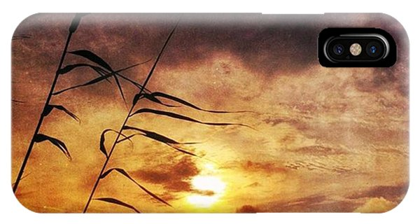 Sunset iPhone Case - Sunset Among The Reeds #sunset by Joan McCool