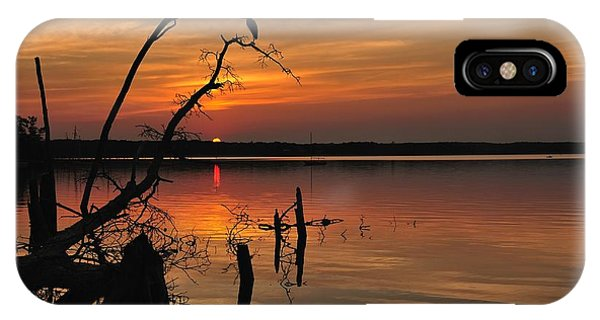 IPhone Case featuring the photograph Sunset And Heron by Angel Cher