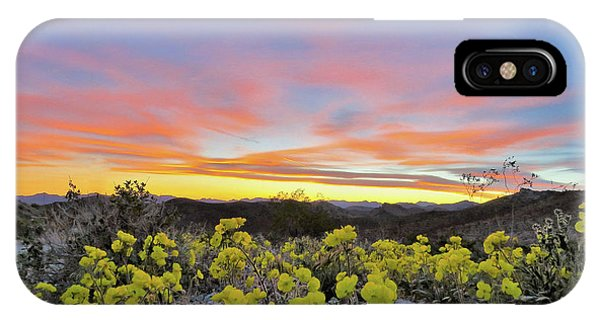 Sunset And Primrose IPhone Case