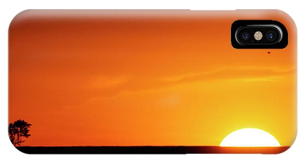 Sunset And Tree -01 IPhone Case