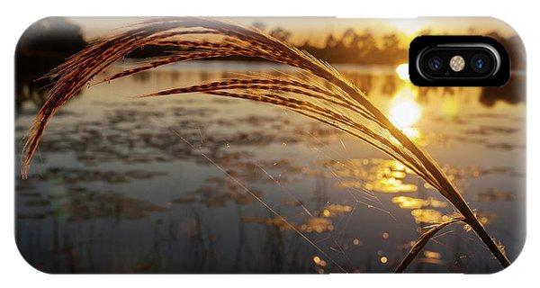 Sunset At Gator Hole 2 IPhone Case