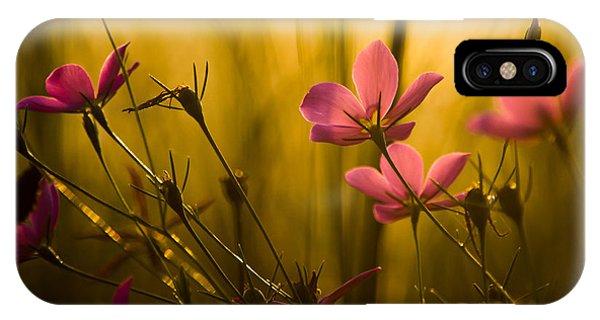 Sunset Beauties IPhone Case