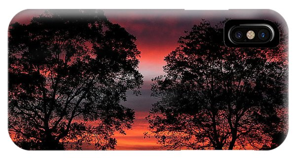 Sunset Behind Two Trees IPhone Case
