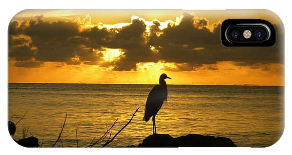 Sunset Bird IPhone Case