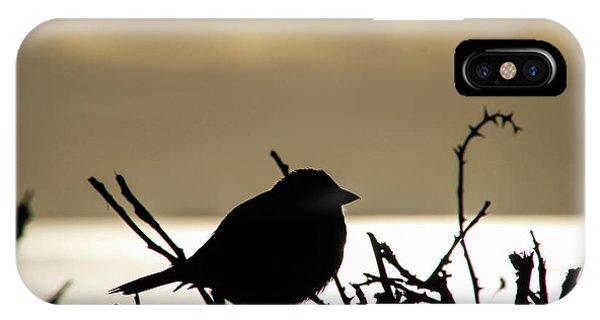 Sunset Bird Silhouette IPhone Case