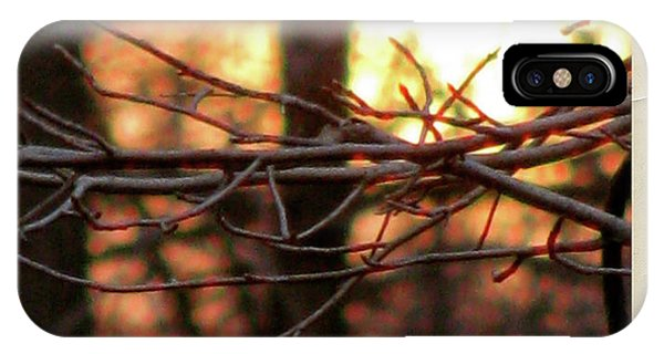 Sunset Branch Out  IPhone Case
