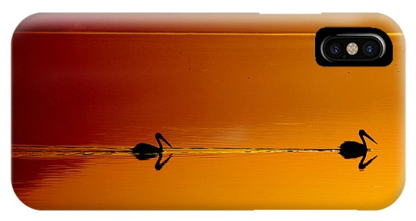 Pelican iPhone Case - Sunset Cruising by Laurie Search