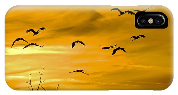 Sunset Fliers IPhone Case