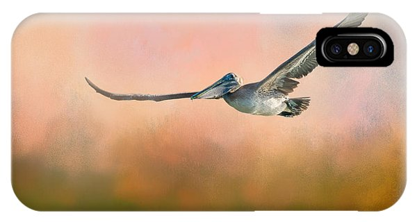 Beauty In Nature iPhone Case - Sunset Flight by Marvin Spates