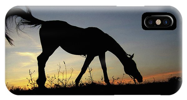 Sunset Horse IPhone Case