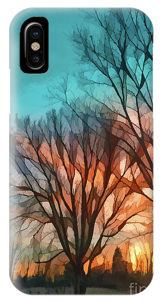 Sunset In The Country IPhone Case