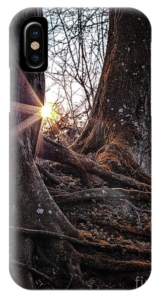 Sunset In The Woods IPhone Case
