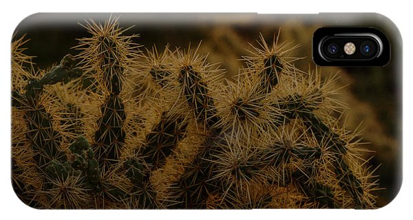 Opuntia Bigelovii iPhone X Case - Sunset Kissed Cholla by Ruth Jolly