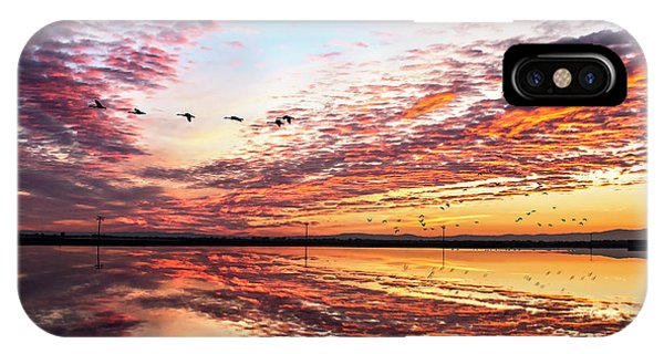 Sunset On The Pacific Flyway IPhone Case