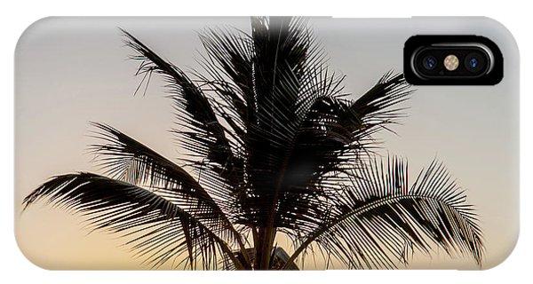 Qld iPhone Case - Sunset Palm by Az Jackson