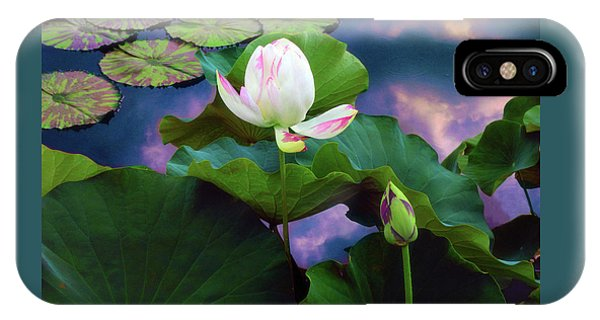 Sunset Pond Lotus IPhone Case