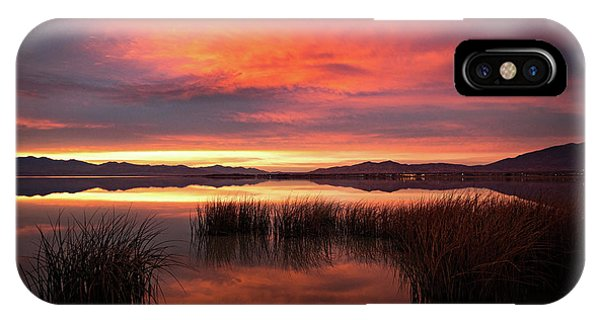 Sunset Reeds On Utah Lake IPhone Case