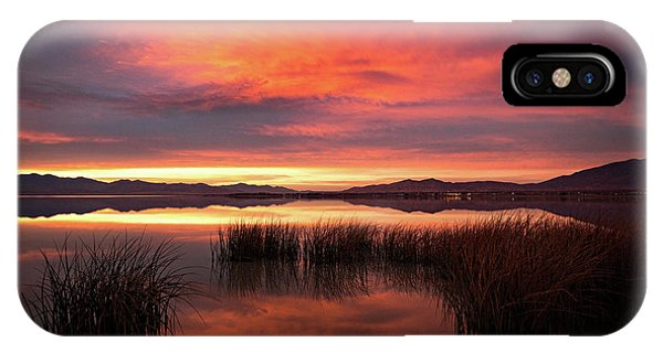 Sunset Reeds On Utah Lake IPhone Case