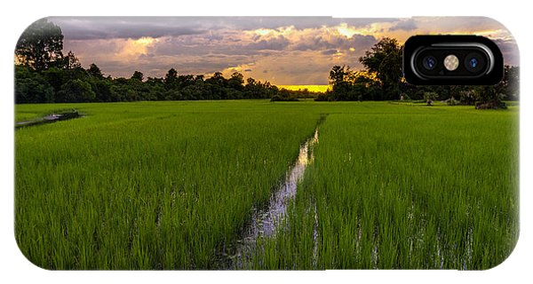 Sunset Rice Fields In Cambodia IPhone Case