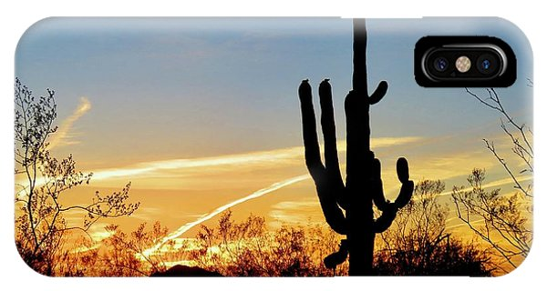 Sunset Saguaro In The Spring IPhone Case