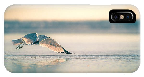 Sunset Seagull Takeoffs IPhone Case