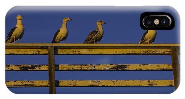 Sunset Seagulls IPhone Case