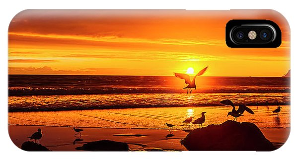 Sunset Surprise Pano IPhone Case