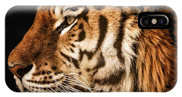Sunset Tiger IPhone Case