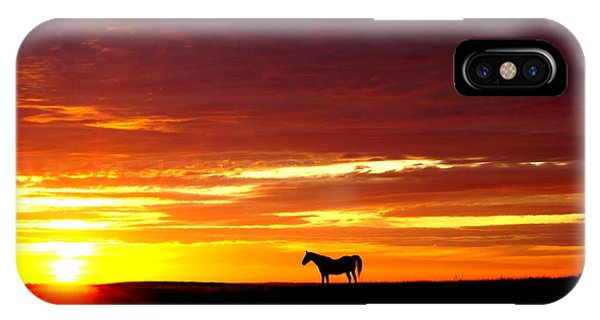 Sunset Watcher IPhone Case