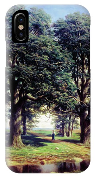Sunshine By The Old Oak Trees IPhone Case