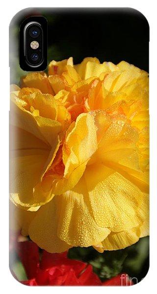 Sunshine On Sunshine IPhone Case