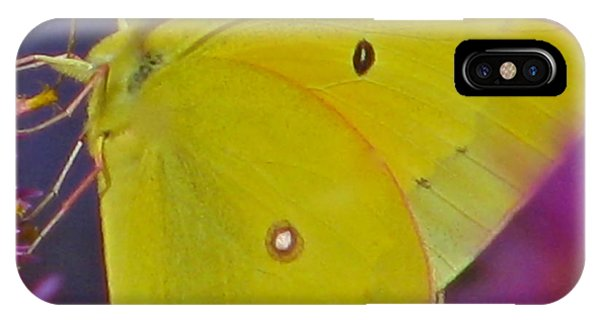 Sunshine Wings IPhone Case
