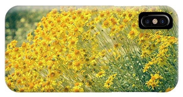 Superbloom Golden Yellow IPhone Case