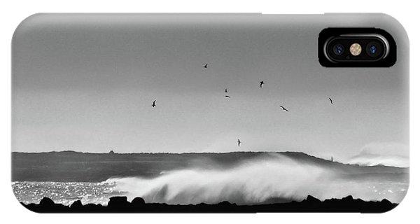 Surf Birds IPhone Case