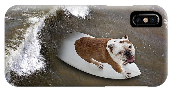 Surfer Dog IPhone Case