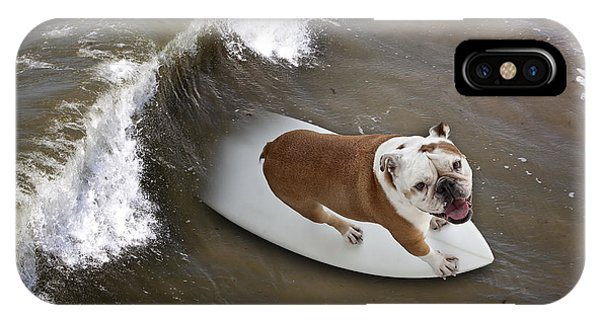 Surfer Dog IPhone Case