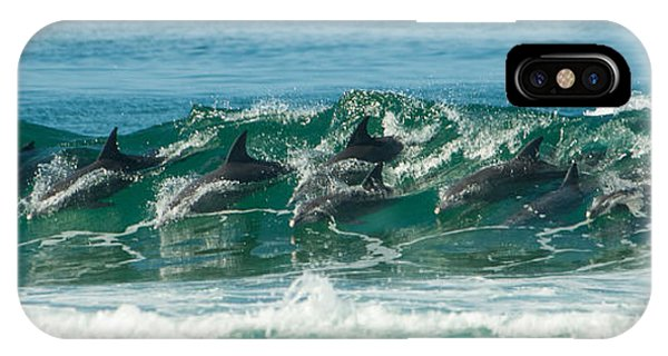 Surfing Dolphins 4 IPhone Case