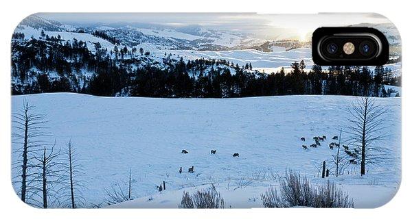 Surise Elk Herd IPhone Case