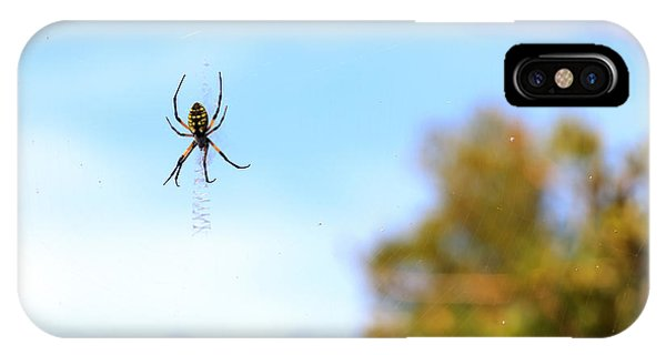 Suspended Spider IPhone Case