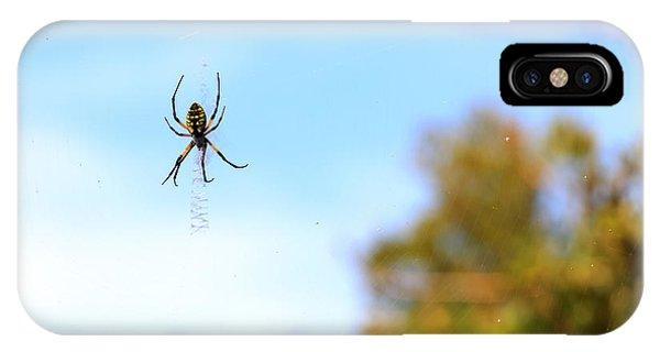 Suspended Spider IPhone Case