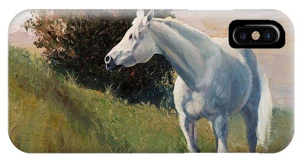 Suzie  Arabian Horse Portrait Painting Phone Case by Kim Corpany