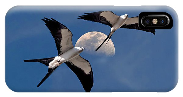 Swallow Tail Kites In Flight Under Moon IPhone Case