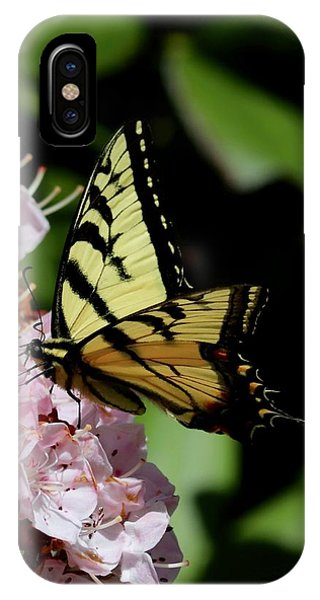 Swallow Tail On Mountain Laurel IPhone Case