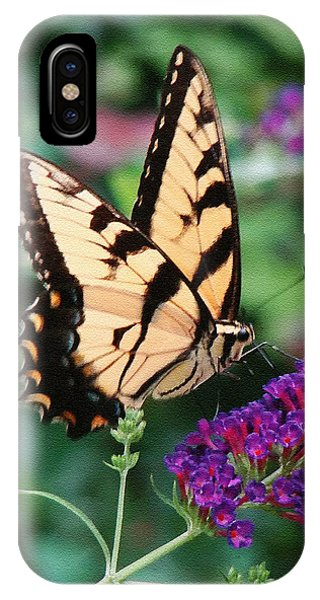 Swallowtail Butterfly 1 IPhone Case