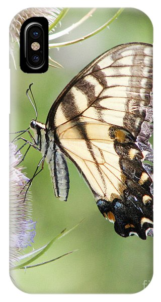 Swallowtail Delight IPhone Case