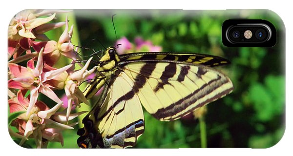 Little Things iPhone Case - Swallowtail by Jeff Swan