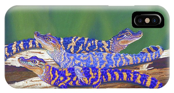 Crocodile iPhone Case - Swamp Babies by Tracy L Teeter